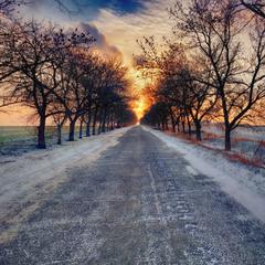слідом за зимовим Сонцем