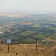 Слева   - Ливан, справа - Сирия.