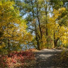 І знову осінь
