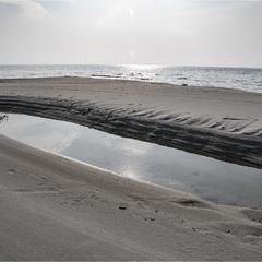 Берег моря в листопаді