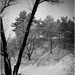 Дорогами Пивихи зимою