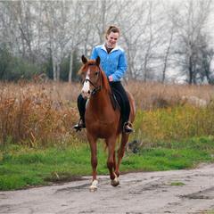 Прогулка верхи на конях