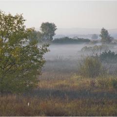 Стелиться туман
