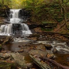Ricketts Glen. Delaware Fall