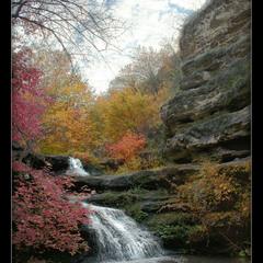 Осень в Цыпова