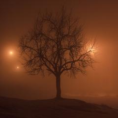 прикраси ночі