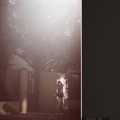Світло і затишно, на цій вулиці