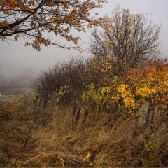 Осеннее прохладное утро