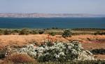 Возле Галилейского моря