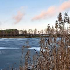 У Андреевских озер