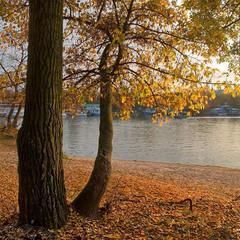 Осенью в Гидропарке