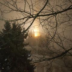 Когда туман опустился на город