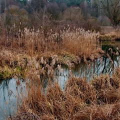 На реке Унава 1