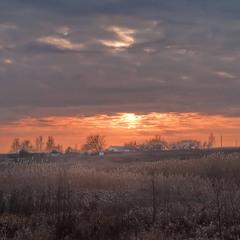 На закате уходящей зимы