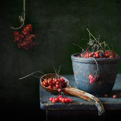 Зимняя ягода...