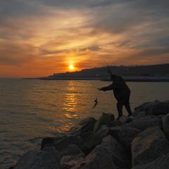 Ловись рыбка не простая