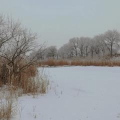 Прогулянка вздовж річки.