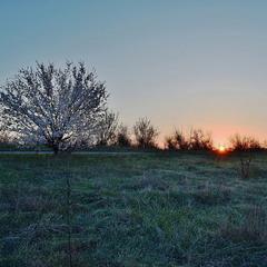 Морозний квітневий ранок.
