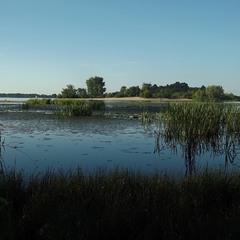 Дніпровська затока.