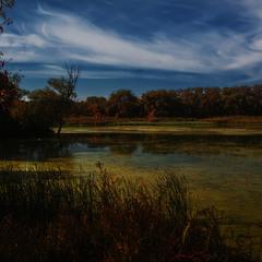 Осенняя печалька