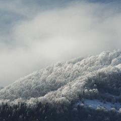 Белая зима в Карпатах