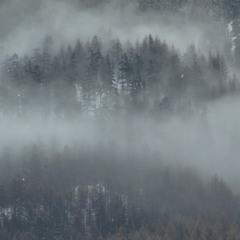 Туманная перспектива...