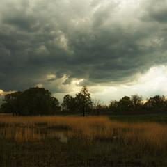 За селом болото...