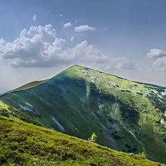гора Негровець, Українські Карпати