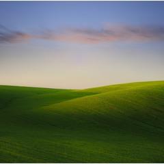Windows in the field