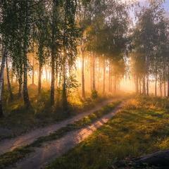 Утро дышит тишиной