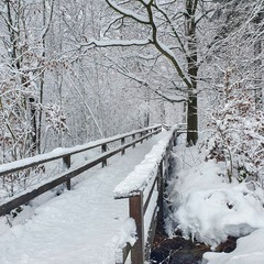 Отголоски зимы