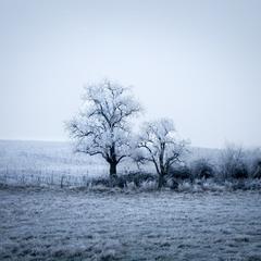 Почти Зима...