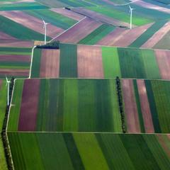 Лоскутки и ветряки 50-метровые