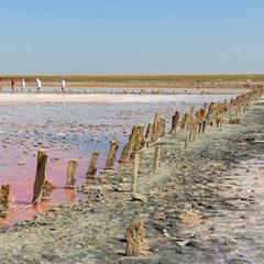"""Геническое соленое""""Розовое озеро"""".Сиваш.Арабатская стрелка"""