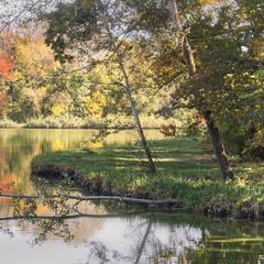 Старий,осінній парк