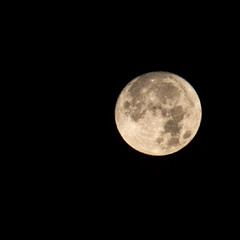 99% луны