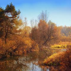 Осень в Киевском парке