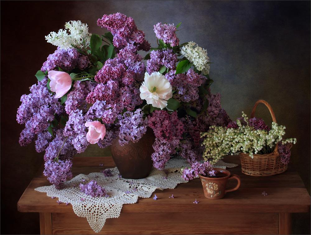брюссельский гриффон картинки цветов сирени ромашек пусть сейчас грузчик