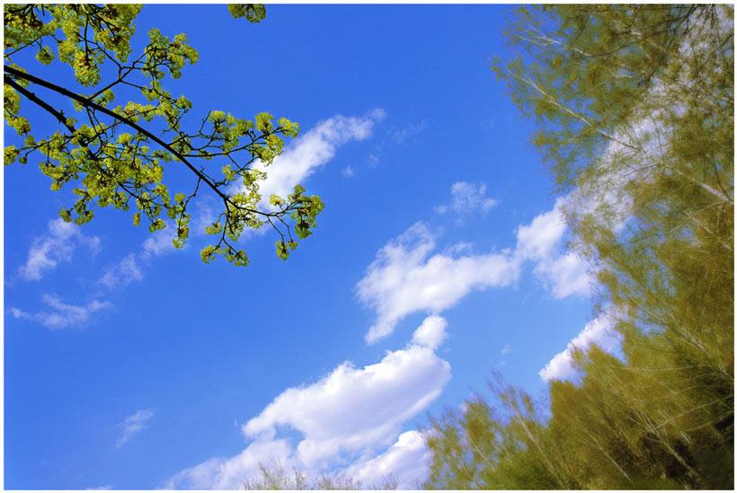 фото весеннего неба интернете
