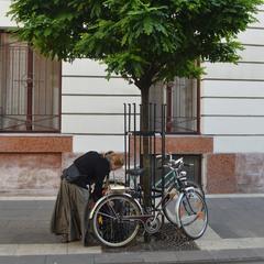 Дівчина та велосипед