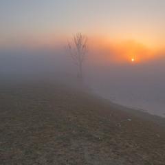 Набрид  фотографу туман...