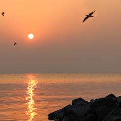 Утро на Киевском море