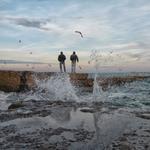 И чайки метались, и волны – о берег...