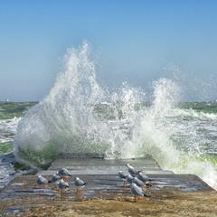 Так вот оно, море!..