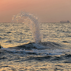 Опять про море...4.0