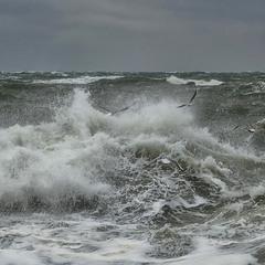 Storm...