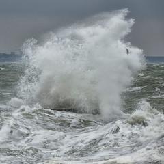 Морская фигура...3.0