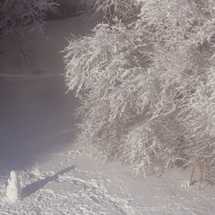 снеговик и его тень