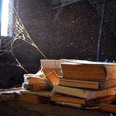 Wonderland of Books