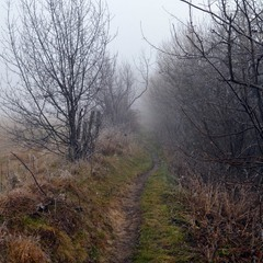 A Path to Nowhere